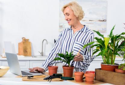 Самые неприхотливые растения для дома